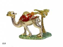 Kamel Oase Siwa - Bild vergrößern
